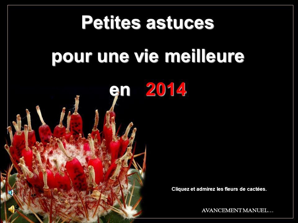 Petites astuces pour une vie meilleure en 2014 Cliquez et admirez les fleurs de cactées.