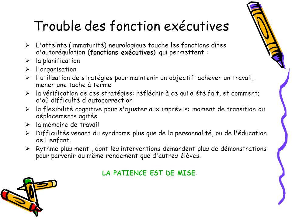 Trouble des fonction exécutives  L'atteinte (immaturité) neurologique touche les fonctions dites d'autorégulation (fonctions exécutives) qui permette
