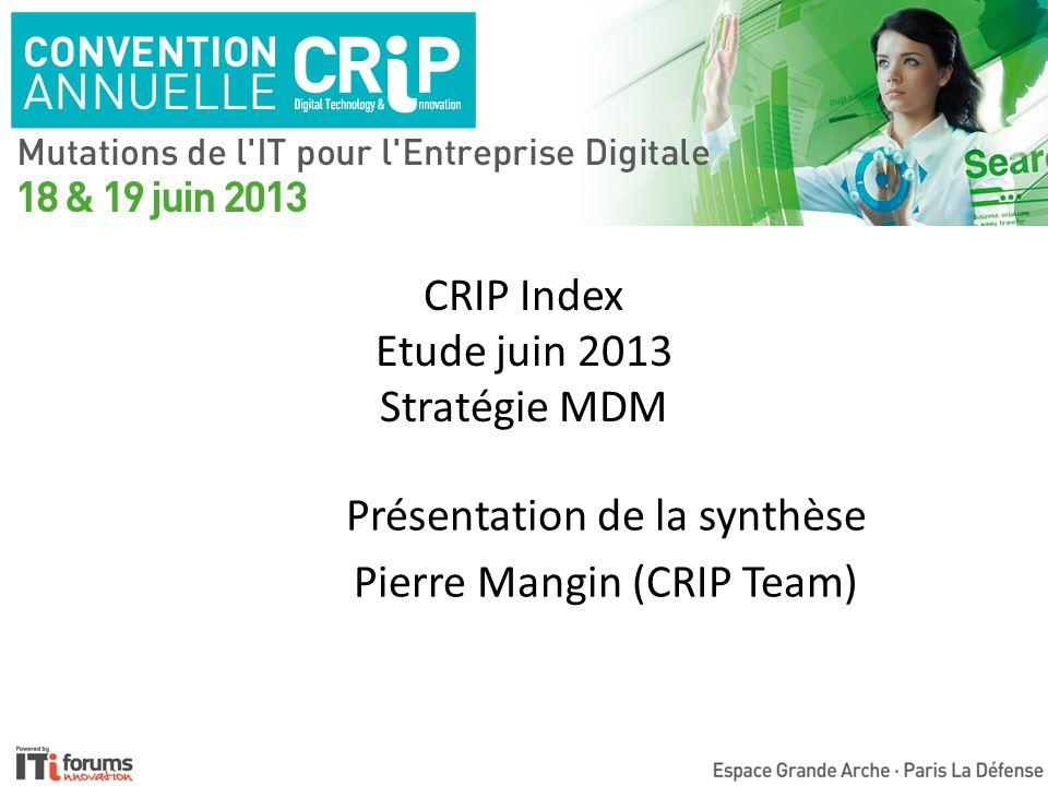 CRIP Index Etude juin 2013 Stratégie MDM Présentation de la synthèse Pierre Mangin (CRIP Team)