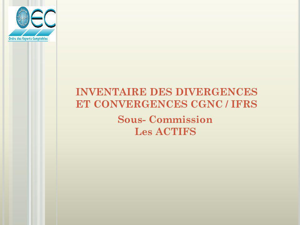 Sous- Commission Les ACTIFS INVENTAIRE DES DIVERGENCES ET CONVERGENCES CGNC / IFRS