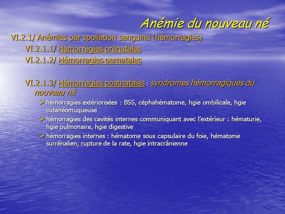 Anémie du nouveau né VI.2.1/ Anémies par spoliation sanguine (hémorragies) VI.2.1/ Anémies par spoliation sanguine (hémorragies) VI.2.1.1/ Hémorragies