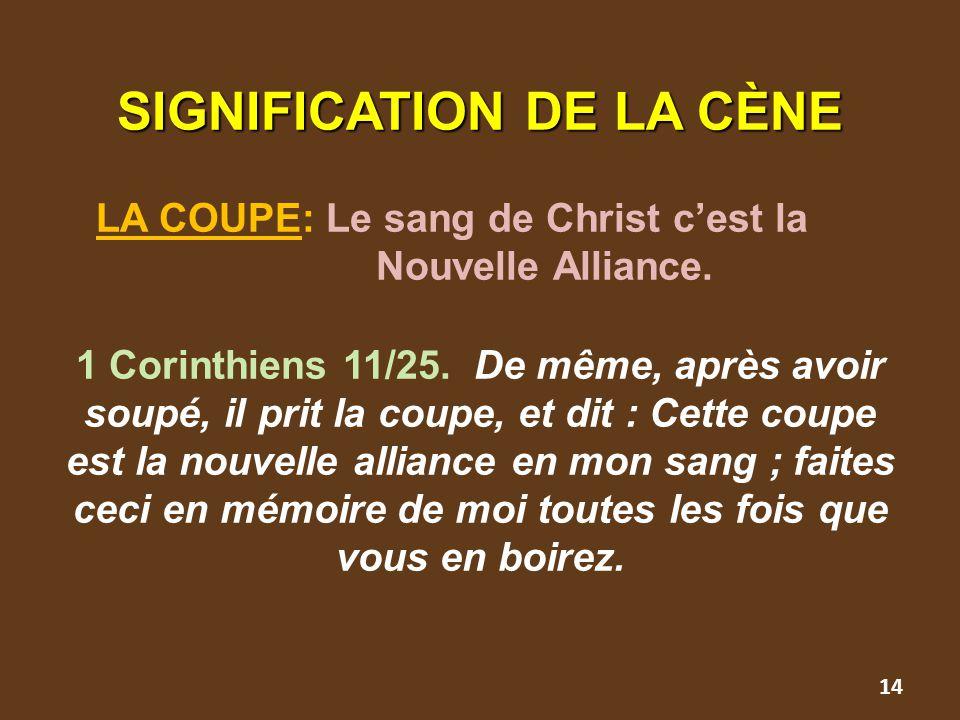 SIGNIFICATION DE LA CÈNE SIGNIFICATION DE LA CÈNE LA COUPE: Le sang de Christ c'est la Nouvelle Alliance. 1 Corinthiens 11/25. De même, après avoir so