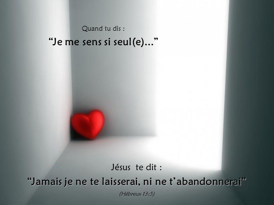 Quand tu dis : Je me sens si seul(e)... Jésus te dit : Jamais je ne te laisserai, ni ne t'abandonnerai (Hébreux 13:5)