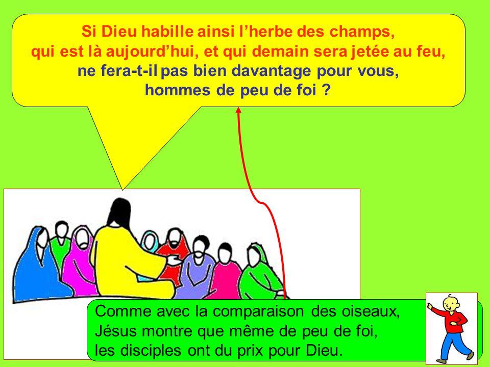 Extrait de « Mille images d'Évangile » de Jean François KIEFFER (Presse d'Île de France) Si Dieu habille ainsi l'herbe des champs, qui est là aujourd'