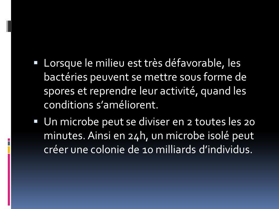 Un microbe peut se diviser en 2 toutes les 20 minutes. Ainsi en 24h, un microbe isolé peut créer une colonie de 10 milliards d'individus.