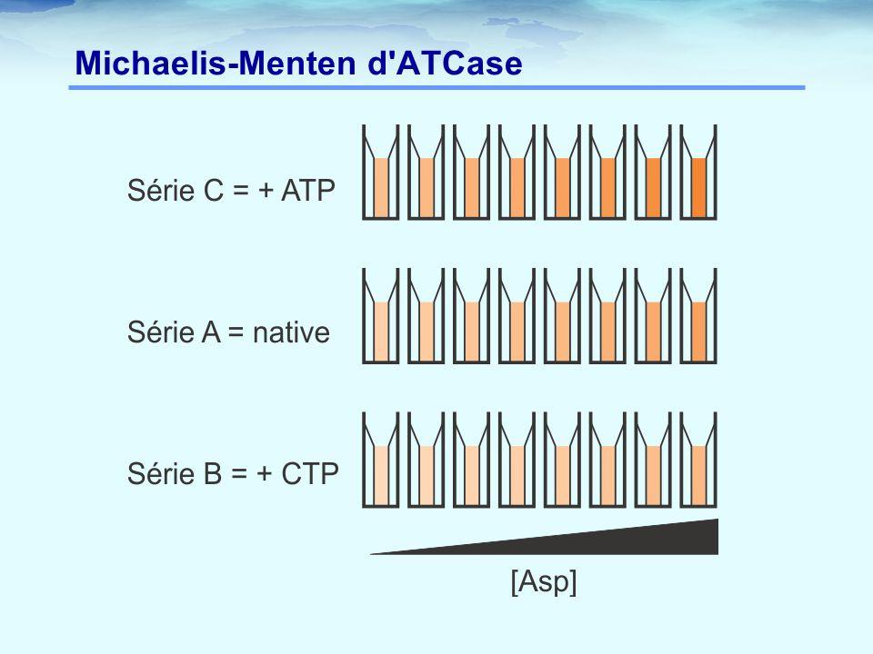 Michaelis-Menten d'ATCase