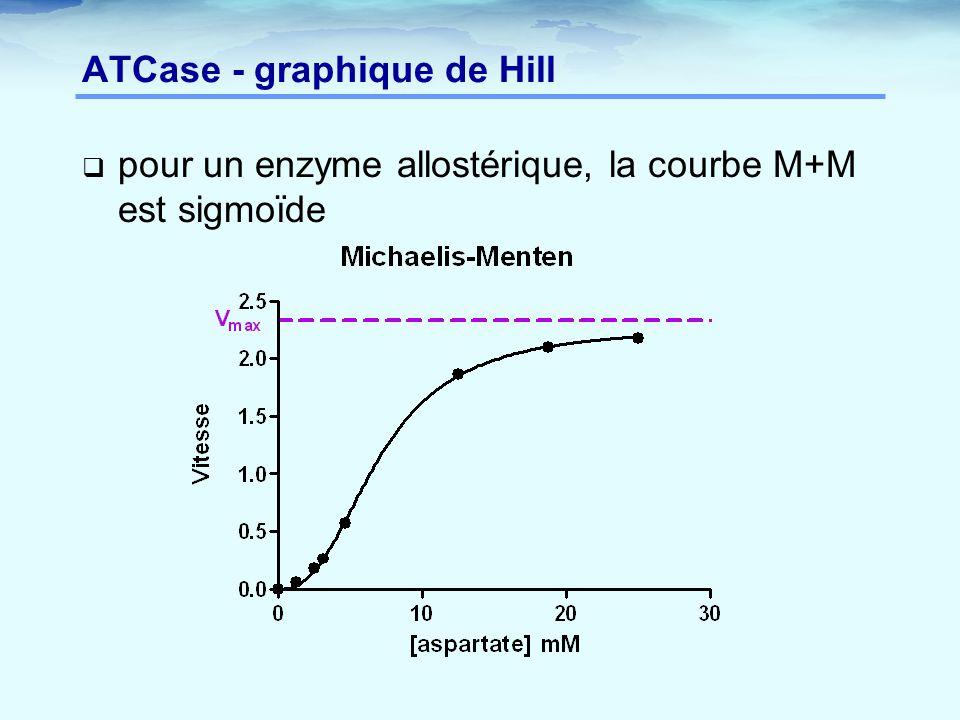 ATCase - graphique de Hill  pour un enzyme allostérique, la courbe M+M est sigmoïde