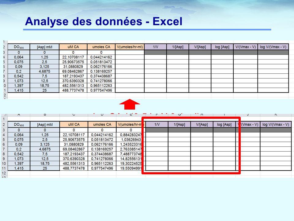 Analyse des données - Excel = µmoles CA / (0,5 hr X 0,1 ml)
