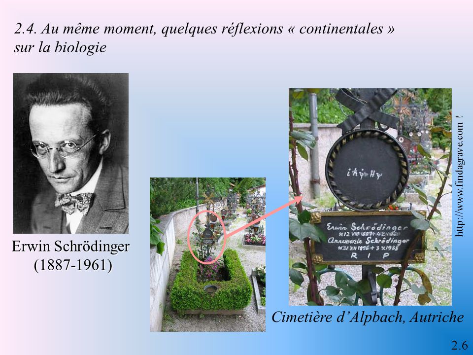 L'illumination structuraliste Roman Jakobson (1896-1982) Claude Lévi-Strauss (né en 1908) 2.5