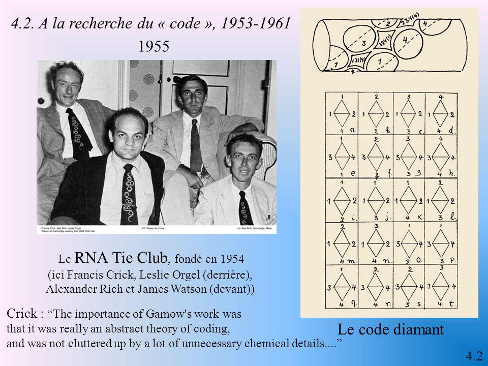 4.1 Watson & Crick, 1953 Strasser 2003 IV – 1953, une publication qui fait date 4.1 L'information dans le modèle de Crick et Watson