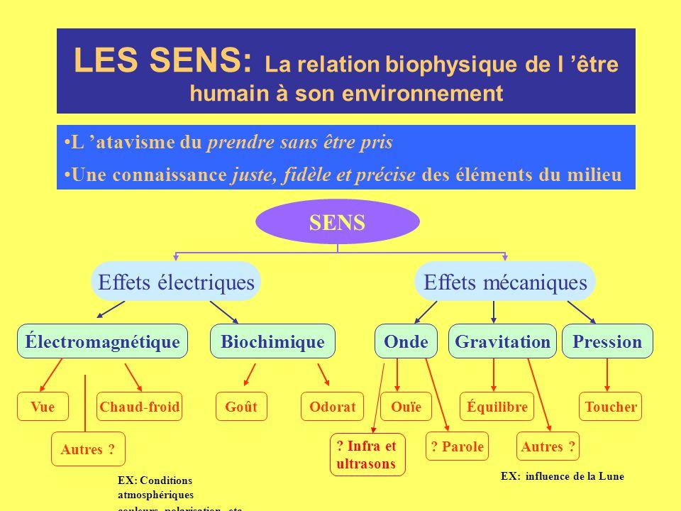 LES SENS: La relation biophysique de l 'être humain à son environnement L 'atavisme du prendre sans être pris Une connaissance juste, fidèle et précis