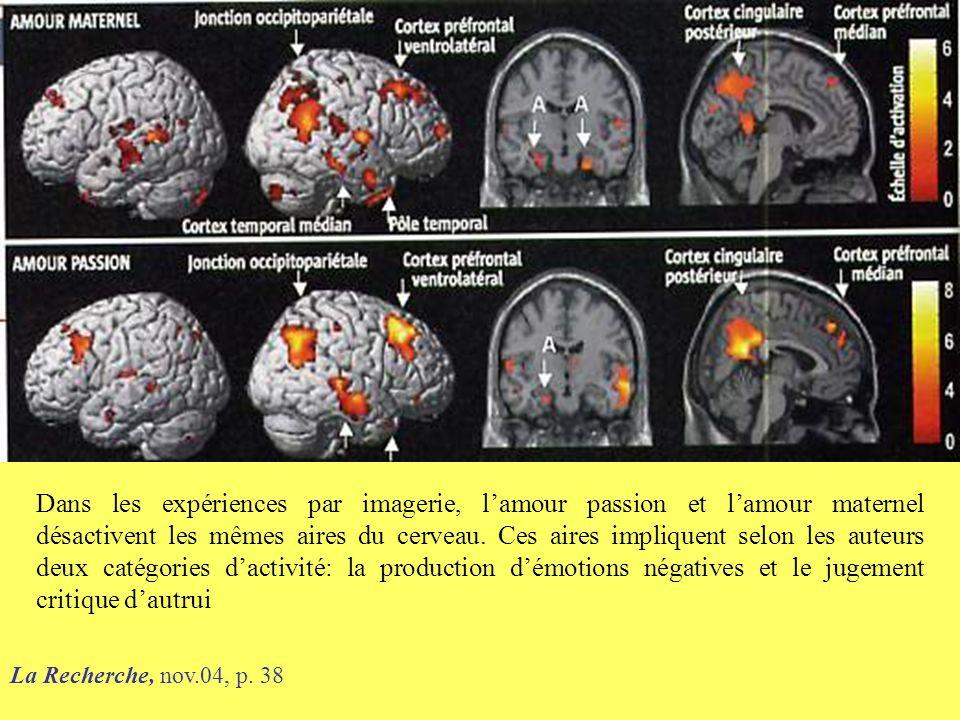 La Recherche, nov.04, p. 38 Dans les expériences par imagerie, l'amour passion et l'amour maternel désactivent les mêmes aires du cerveau. Ces aires i