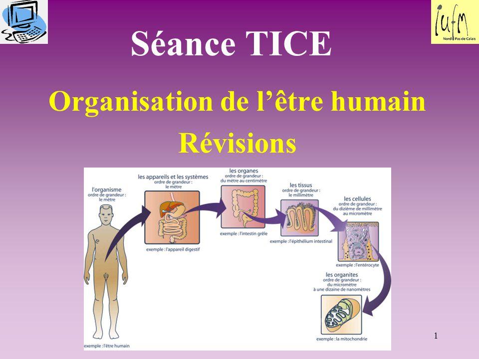 1 Séance TICE Organisation de l'être humain Révisions