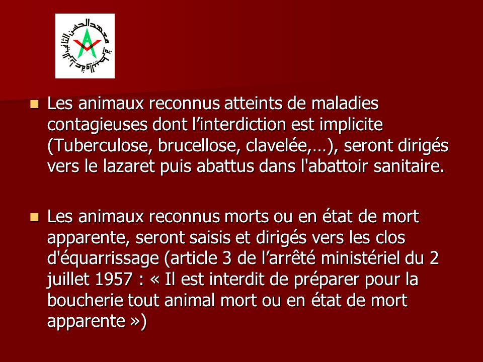 Les animaux reconnus atteints de maladies contagieuses dont l'interdiction est implicite (Tuberculose, brucellose, clavelée,…), seront dirigés vers le