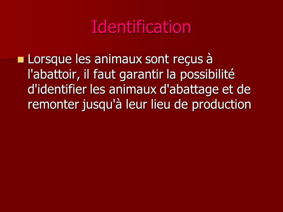 Identification Lorsque les animaux sont reçus à l'abattoir, il faut garantir la possibilité d'identifier les animaux d'abattage et de remonter jusqu'à