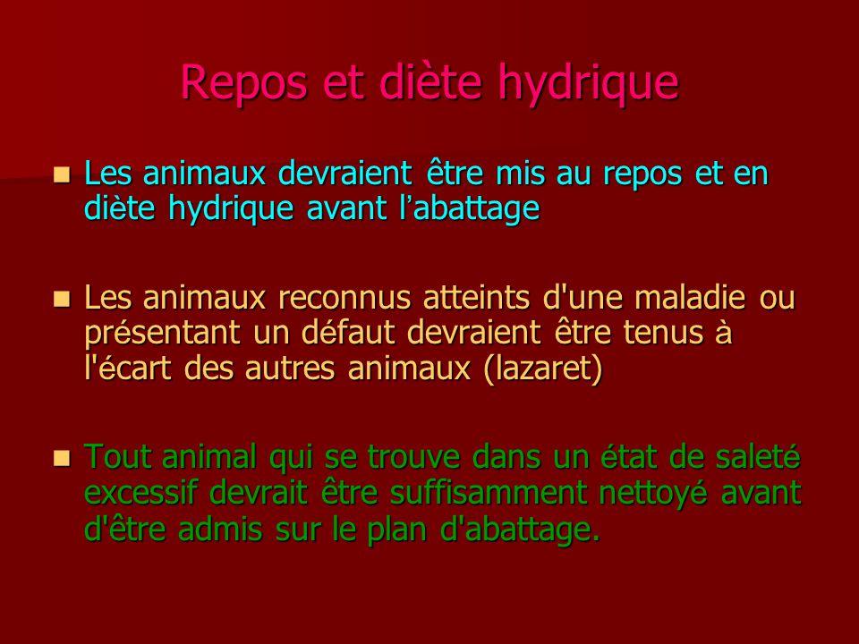 Repos et diète hydrique Les animaux devraient être mis au repos et en di è te hydrique avant l ' abattage Les animaux devraient être mis au repos et e