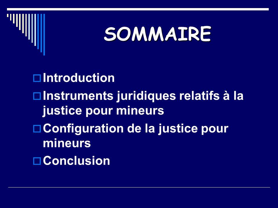 SOMMAIRE  Introduction  Instruments juridiques relatifs à la justice pour mineurs  Configuration de la justice pour mineurs  Conclusion