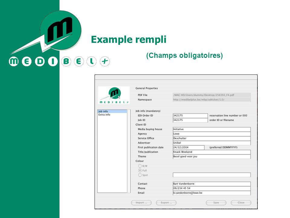 Example rempli (Champs obligatoires)