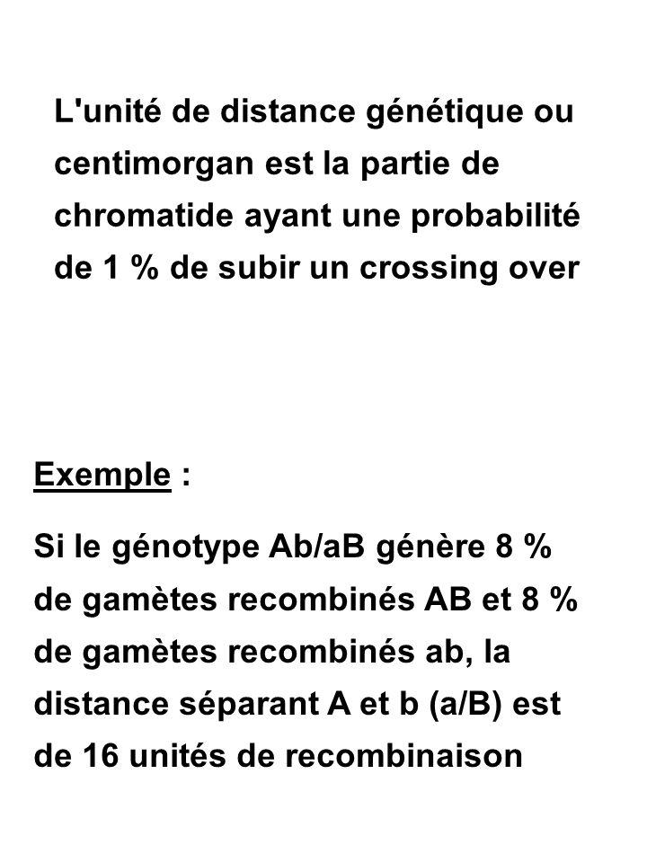 L'unité de distance génétique ou centimorgan est la partie de chromatide ayant une probabilité de 1 % de subir un crossing over Exemple : Si le génoty
