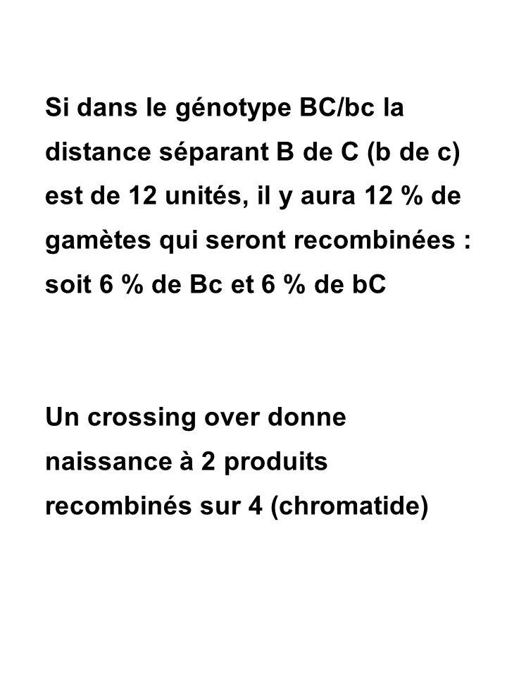 Si dans le génotype BC/bc la distance séparant B de C (b de c) est de 12 unités, il y aura 12 % de gamètes qui seront recombinées : soit 6 % de Bc et