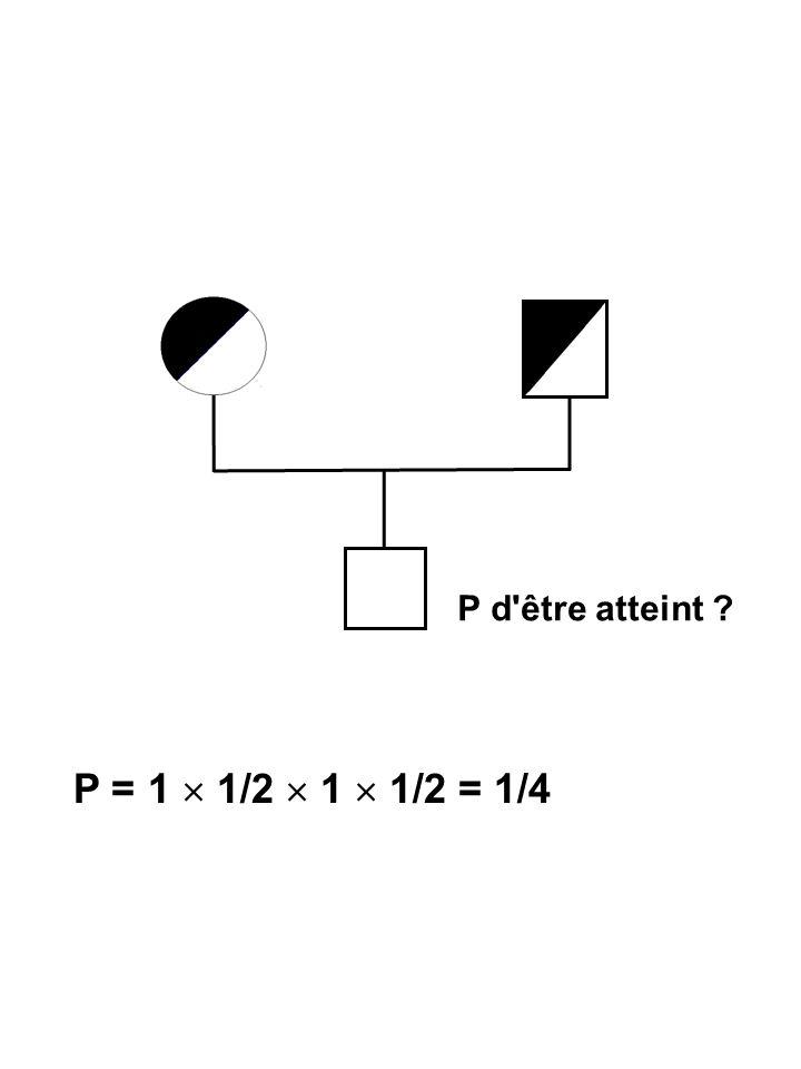 Probabilité d'avoir 3 enfants atteints et un normal NMMM MMMN MNMM MMNM Chaque situation : Probabilité 4 x (1/4) 3  3/4