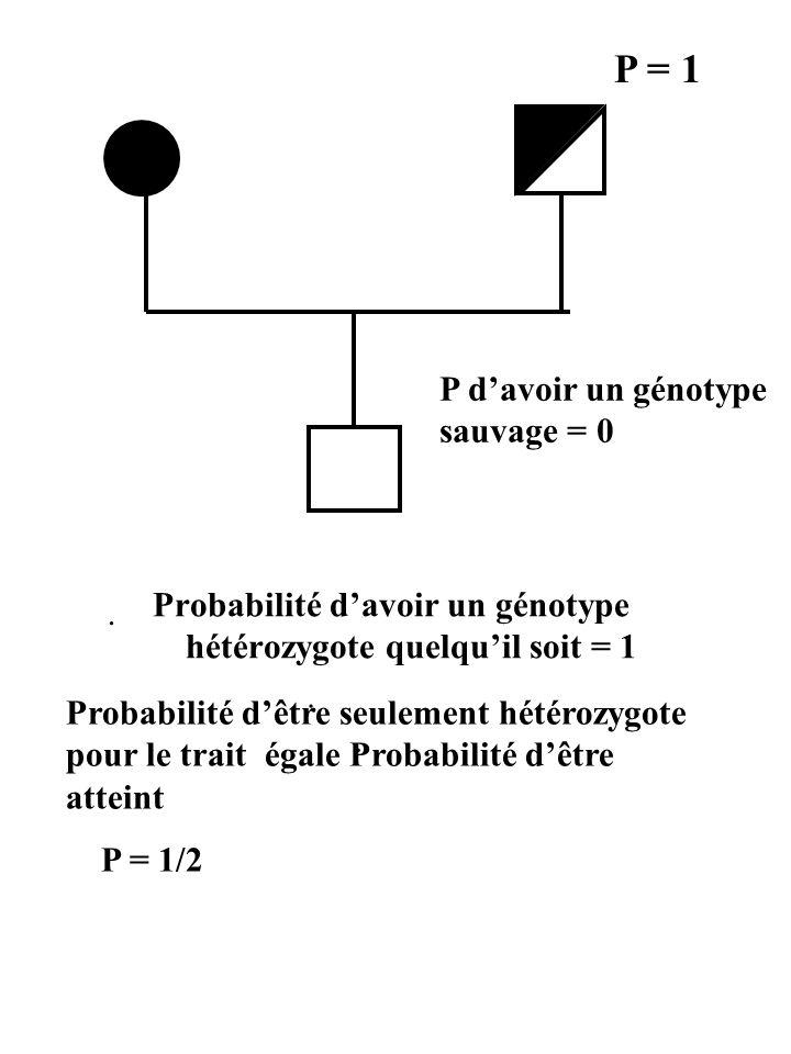Probabilité d'avoir un génotype hétérozygote quelqu'il soit = 1 P = 1 P d'avoir un génotype sauvage = 0.... Probabilité d'être seulement hétérozygote