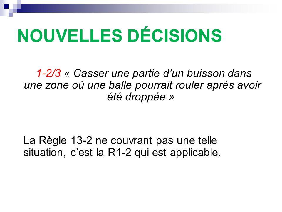 NOUVELLES DÉCISIONS 1-2/3 « Casser une partie d'un buisson dans une zone où une balle pourrait rouler après avoir été droppée » La Règle 13-2 ne couvr