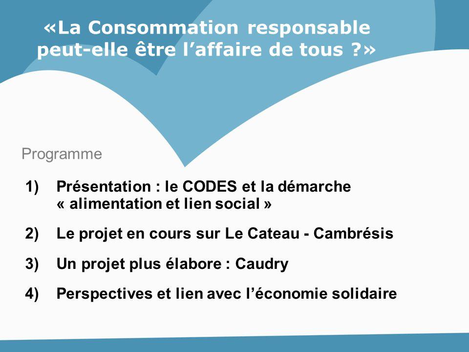 «La Consommation responsable peut-elle être l'affaire de tous ?» 1)Présentation : le CODES et la démarche « alimentation et lien social » 2)Le projet