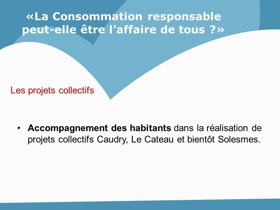 «La Consommation responsable peut-elle être l'affaire de tous ?» Accompagnement des habitants dans la réalisation de projets collectifs Caudry, Le Cat