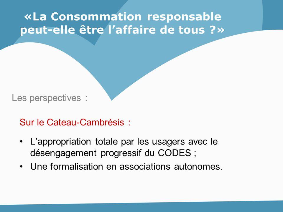Sur le Cateau-Cambrésis : L'appropriation totale par les usagers avec le désengagement progressif du CODES ; Une formalisation en associations autonom
