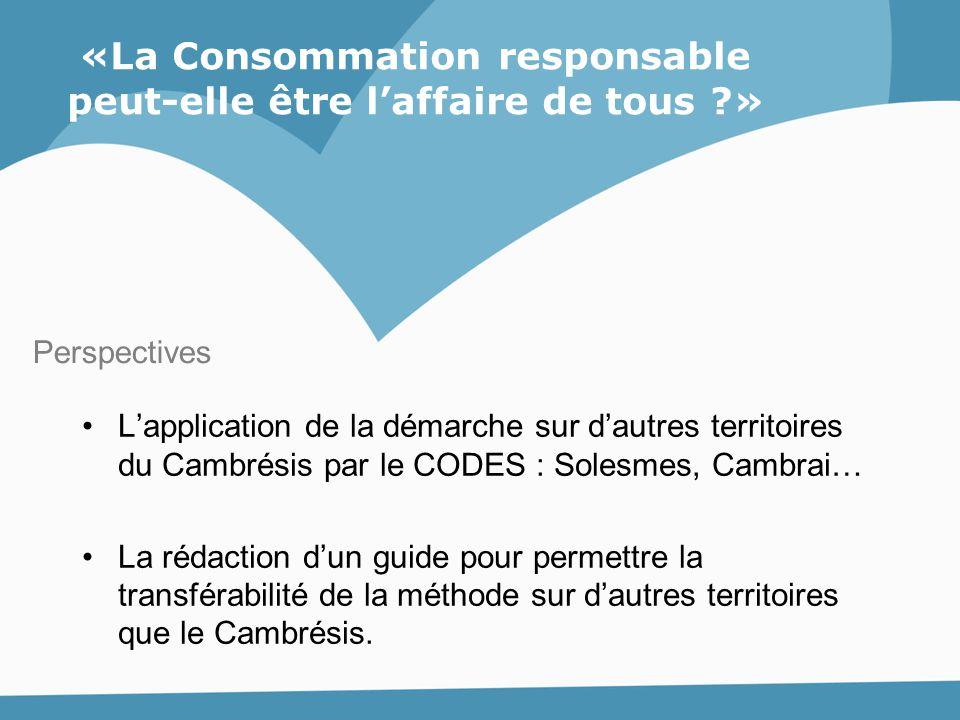 L'application de la démarche sur d'autres territoires du Cambrésis par le CODES : Solesmes, Cambrai… La rédaction d'un guide pour permettre la transfé