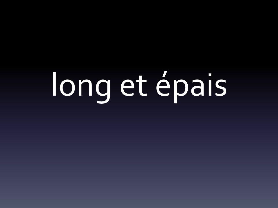 long et épais