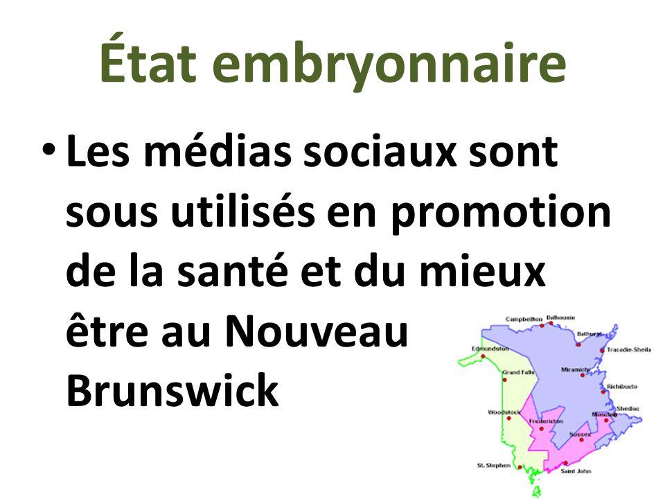 État embryonnaire Les médias sociaux sont sous utilisés en promotion de la santé et du mieux être au Nouveau Brunswick