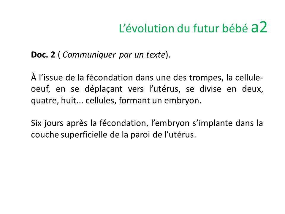 L'évolution du futur bébé a3 Doc.1 et 2 ( Interpréter un schéma fonctionnel).