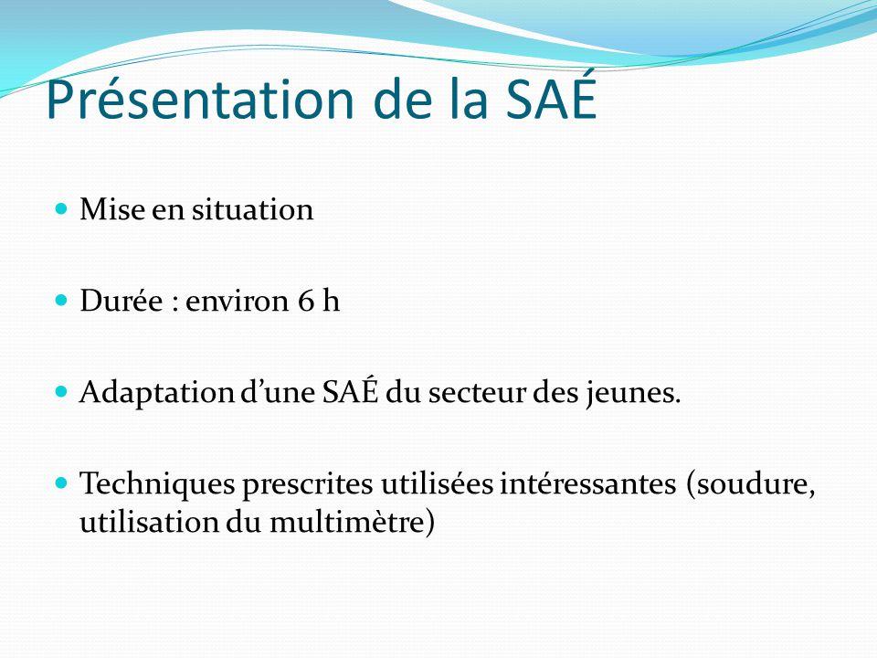 Présentation de la SAÉ Mise en situation Durée : environ 6 h Adaptation d'une SAÉ du secteur des jeunes.
