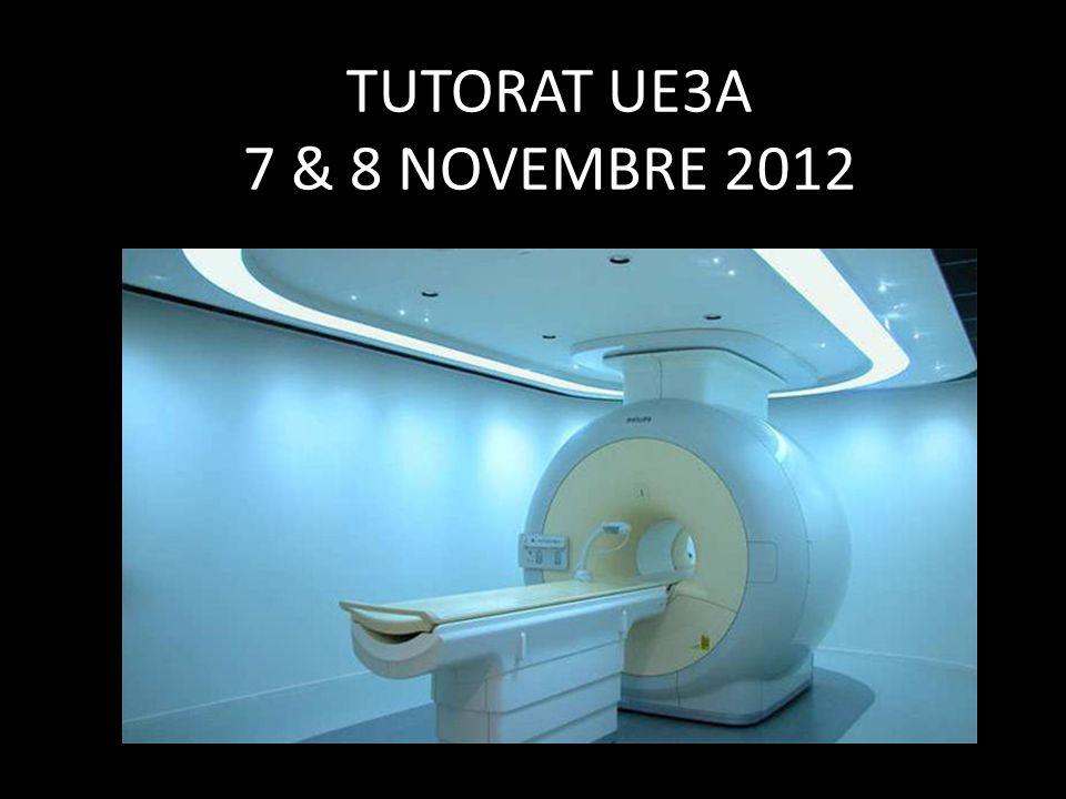 TUTORAT UE3A 7 & 8 NOVEMBRE 2012