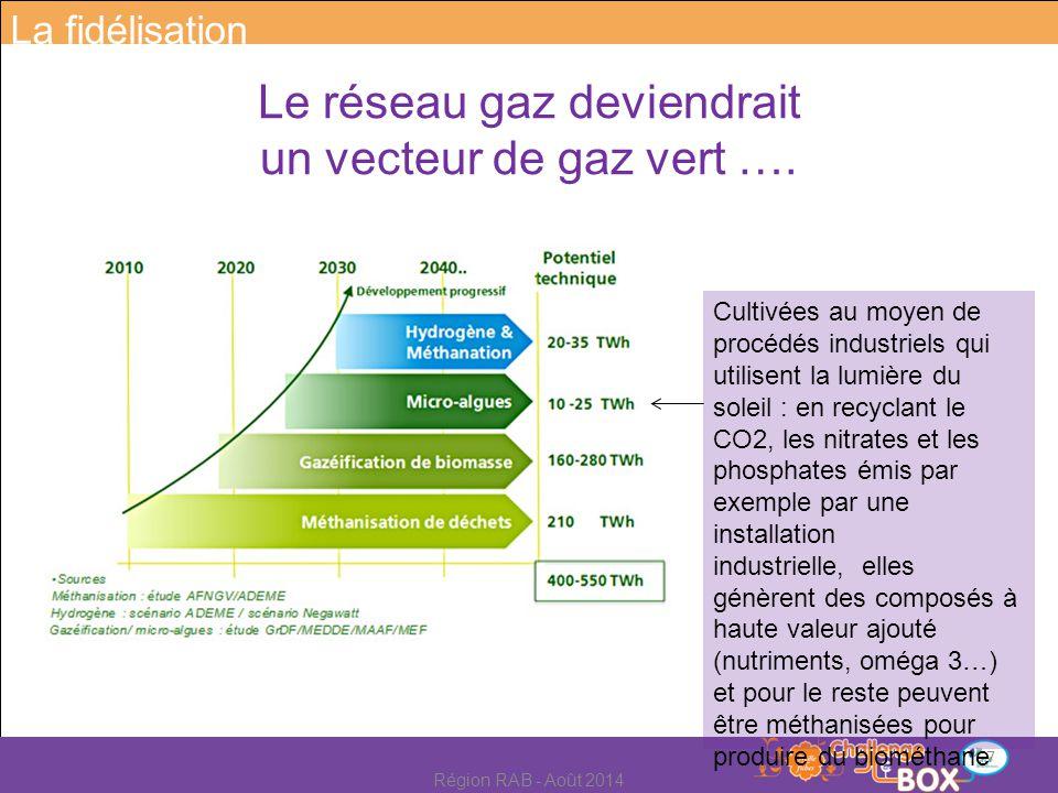 Transformation des excédents d'électricité renouvelable en hydrogène (par électrolyse) pour injection dans le réseau.