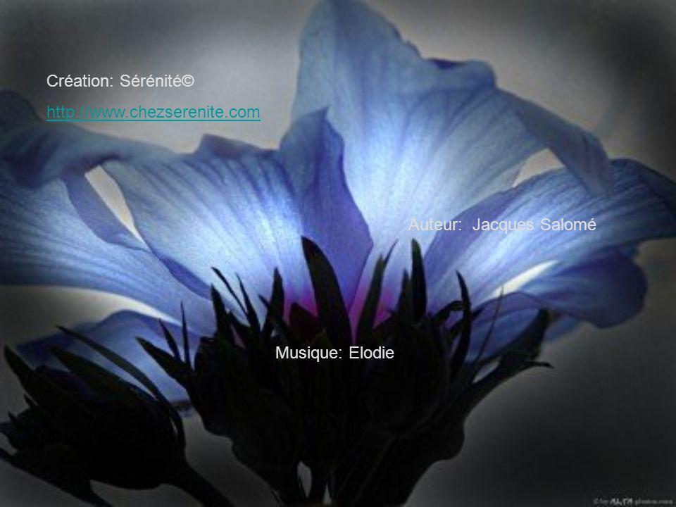 Création: Sérénité© http://www.chezserenite.com Auteur: Jacques Salomé Musique: Elodie