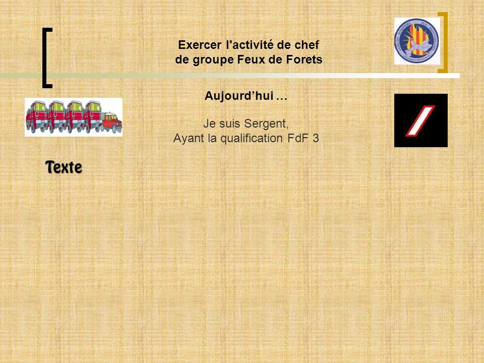 Aujourd'hui … Exercer l'activité de chef de groupe Feux de Forets Je suis Sergent, Ayant la qualification FdF 3 Texte