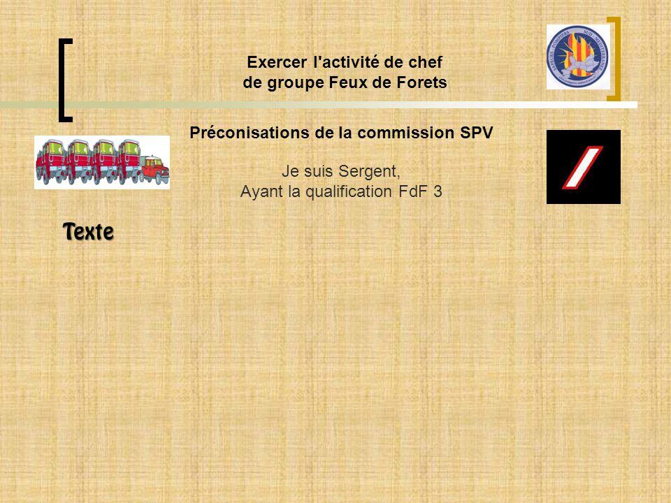 Préconisations de la commission SPV Exercer l'activité de chef de groupe Feux de Forets Je suis Sergent, Ayant la qualification FdF 3 Texte