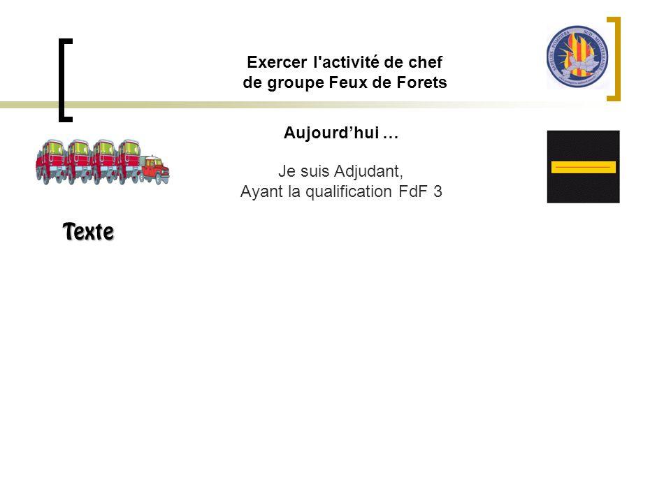 Aujourd'hui … Exercer l'activité de chef de groupe Feux de Forets Je suis Adjudant, Ayant la qualification FdF 3 Texte