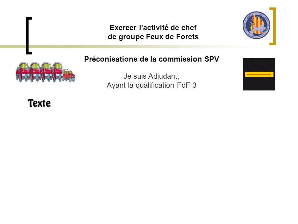 Préconisations de la commission SPV Exercer l'activité de chef de groupe Feux de Forets Je suis Adjudant, Ayant la qualification FdF 3 Texte