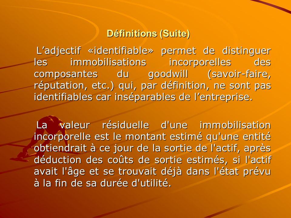 Définitions (Suite) Définitions (Suite) L'adjectif «identifiable» permet de distinguer les immobilisations incorporelles des composantes du goodwill (
