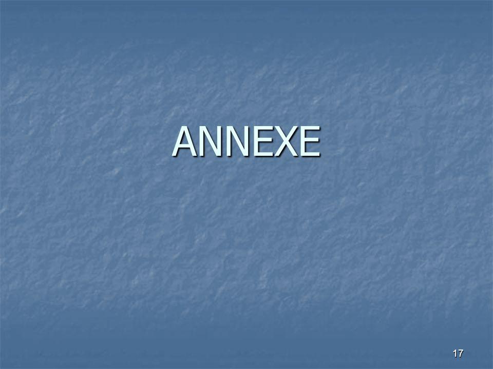 17 ANNEXE