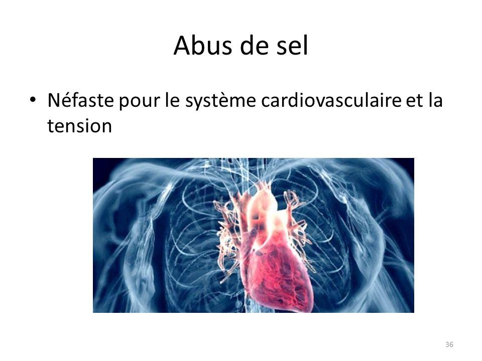 Abus de sel Néfaste pour le système cardiovasculaire et la tension 36