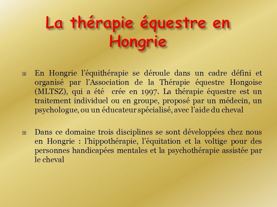  En Hongrie l'équithérapie se déroule dans un cadre défini et organisé par l'Association de la Thérapie équestre Hongoise (MLTSZ), qui a été crée en 1997.