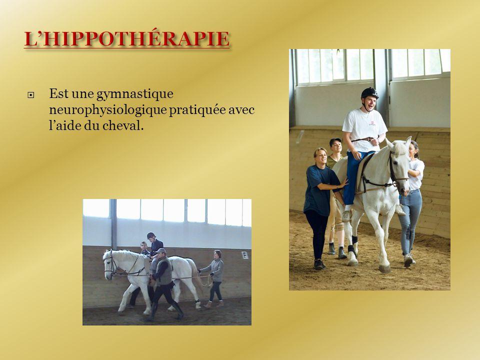  Est une gymnastique neurophysiologique pratiquée avec l'aide du cheval.