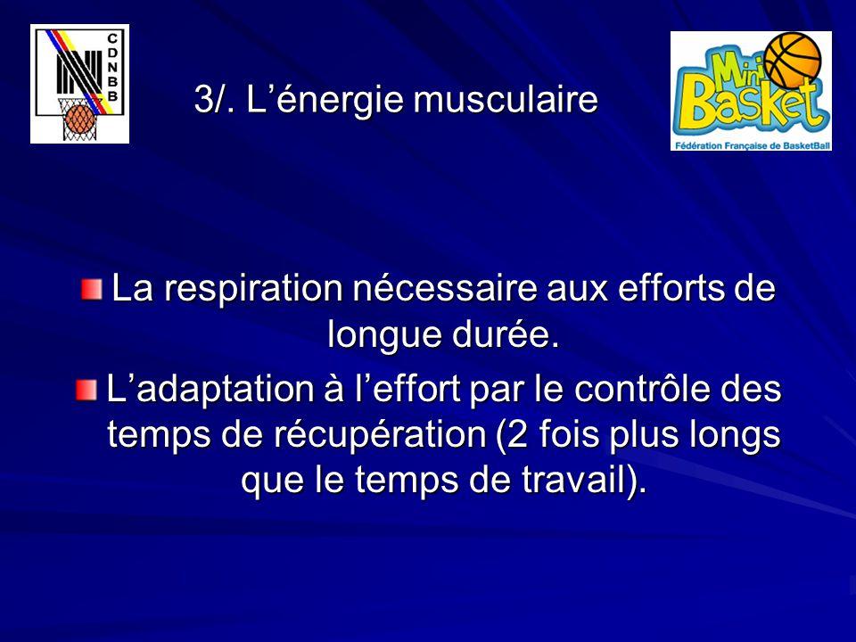 3/. L'énergie musculaire 3/. L'énergie musculaire La respiration nécessaire aux efforts de longue durée. L'adaptation à l'effort par le contrôle des t