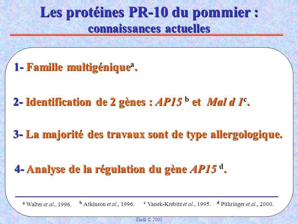Les protéines PR-10 du pommier : connaissances actuelles 1- Famille multigénique a.