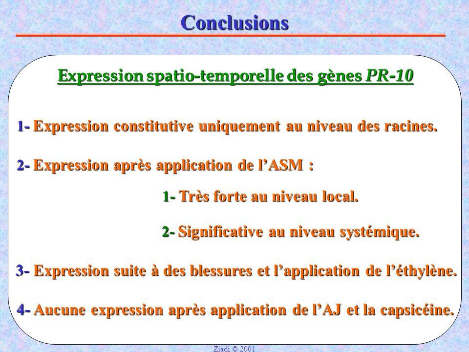 Conclusions Expression spatio-temporelle des gènes PR-10 2- Expression après application de l'ASM : 4- Aucune expression après application de l'AJ et la capsicéine.